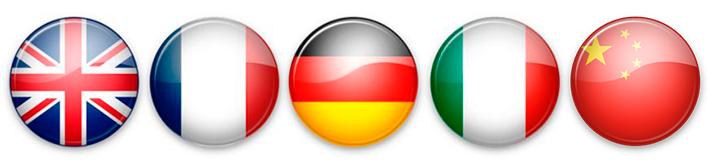 banderas-idiomas-academia-goma
