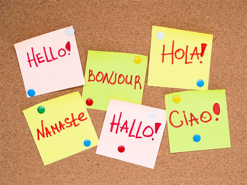 bilingüismo-academia-goma